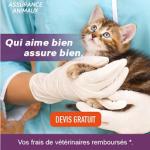 Fev18_Générique_Gants